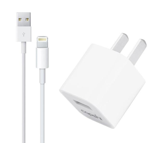 Apple Fast Charger.jpg