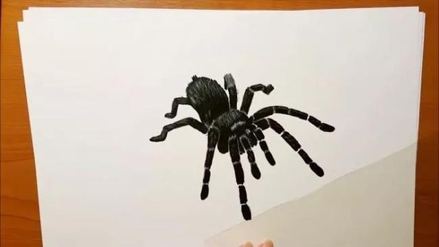 【视频】写实手绘的街坊教程彩铅比较蜘蛛视频视频色黑色图片