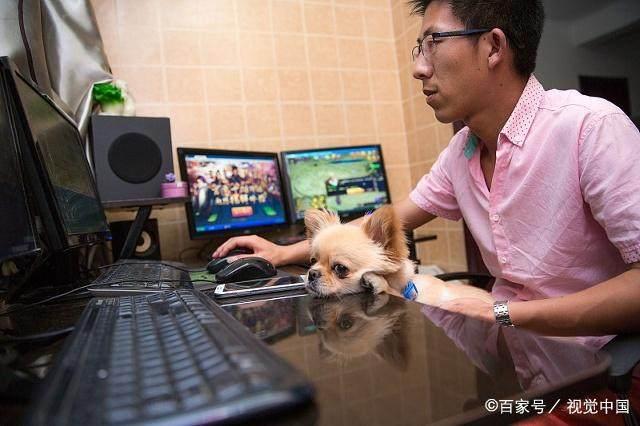抢班夺权?以太猫日活跃下降98.5%!区块链游戏:得解决4个问题