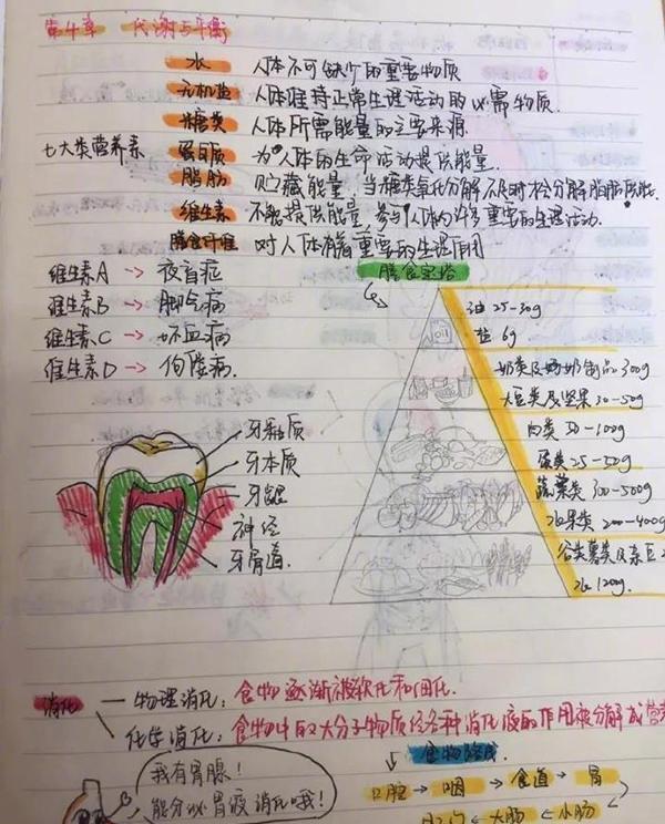 初中生把科学自然整理成绘本,初中们我们也学笔记科学课同学图片