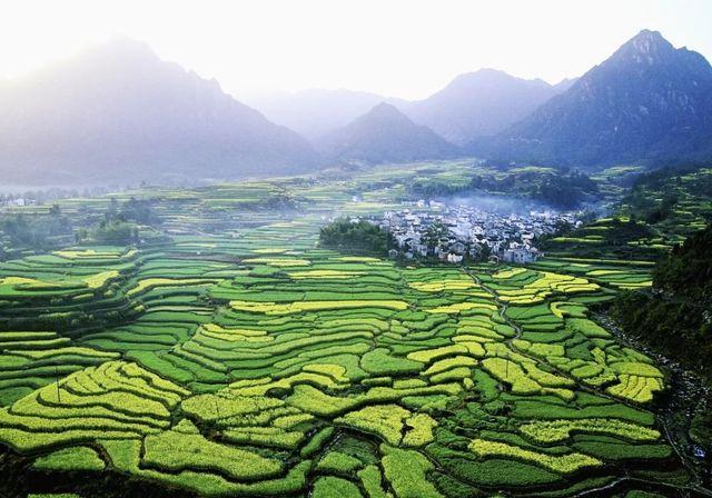 让农业强起来 农村美起来 农民富起来