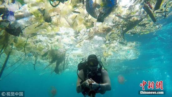 """巴厘岛水下拍摄 """"人间天堂""""尽是塑料垃圾"""